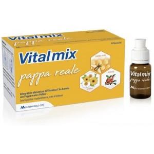 Vitalmix Pappa Reale 10Flaconcini X10 Ml S/Gl