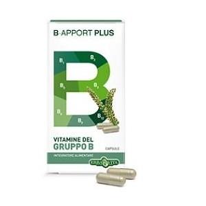 B Apport Plus 40 Capsule