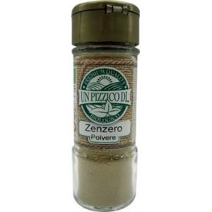 Zenzero Polvere Bio 30 G